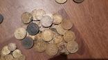 160 монет дореформы, фото №5