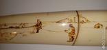 Бивень, клык моржа с рисунком охота. 320гр., фото №4