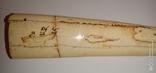 Бивень, клык моржа с рисунком охота. 320гр., фото №5