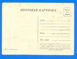 ДОСФЛОТОВЦЫ Гребцы П.Малолетков 1950 тир.120 000, фото №3