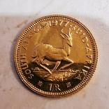 Південно-Африканська Республіка 1 ранд, 1977 р., фото №2