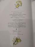 Приключения Чиполлино Джанни Родари книга детская иллюстрированная, фото №9