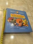 Приключения Чиполлино Джанни Родари книга детская иллюстрированная, фото №10