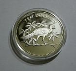 Белиз 10 долларов 1974 - Птицы - серебро, фото №2