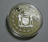 Белиз 10 долларов 1974 - Птицы - серебро, фото №3
