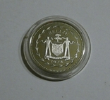 Белиз, 25 центов 1974 - Птицы - серебро, фото №3