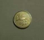 Белиз, 10 центов 1974 - Птицы - серебро, фото №2