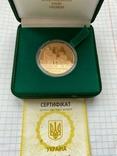 Золотые ворота 100 грн, фото №2