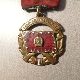 Медаль за заслуги перед отечеством Венгрия, фото №6