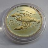 50 рублей 2004 г. Proof (1/4 oz 999,9), фото №4
