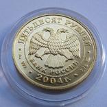 50 рублей 2004 г. Proof (1/4 oz 999,9), фото №7