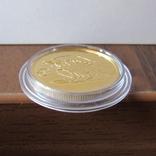 50 рублей 2004 г. Proof (1/4 oz 999,9), фото №8