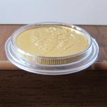 50 рублей 2004 г. Proof (1/4 oz 999,9), фото №9