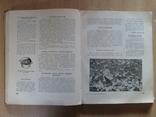 Книга о вкусной и здоровой пище 1954г.(Сталин), фото №13