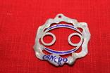 """Кулон знак зодиака"""" Рак"""" серебро, фото №2"""