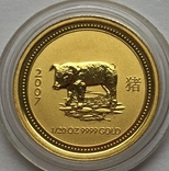 5 долларов 2007 года. Год Свиньи. 1/20 унции, фото №2