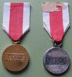« Золотая « и « серебряная» медали « За заслуги в обороне страны», фото №3