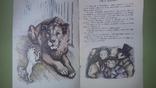 Толстой Лев и собачка, фото №5