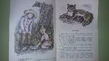 Толстой Лев и собачка, фото №8