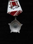 Орден за личное мужество, серебряная копия, фото №4