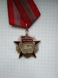 Орден Октябрьской революции, серебряная копия, фото №6