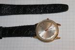 Часы TELL TIME swiss, фото №5