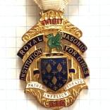 Знак Управляющего Steward RMIG 1950 год, фото №5