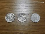 Монети Сигизмунда 3 Ваза 406 штук., фото №3