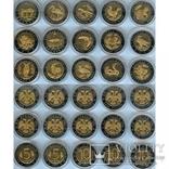 Набор точных копии монет Красная книга Биметал 15 монет в коллекции, фото №2