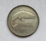 1 флорин 1931 г. Ирландия, серебро, фото №2
