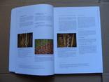 Technologische Studien Band 2/2005. Технологические исследования Том 2/2005, фото №5