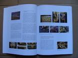 Technologische Studien Band 6/2009. Технологические исследования Том 6/2009, фото №9
