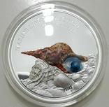 5 долларов Палау 2016. Жемчужина.1 унция.Серебро 999 пробы, фото №3