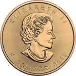 Канада 5 долларов 2019 год.Канадский лист. День семьи 3Д. 1 унция серебра.Тираж 500 шт., фото №4