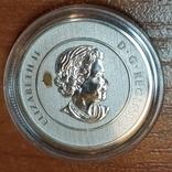 Канада,20 долларов,юбилейные 2013 г. 999,9 пр. Хоккей, фото №3