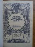 История Русской Литературы 19 века 1910 г., фото №3