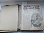 Родина. Комплект за полгода 1902 год. №№ 1 - 26., фото №6