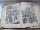 Родина. Комплект за полгода 1902 год. №№ 1 - 26., фото №9