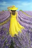 Картина, В жовтому на лавандовому, 60х40см. Живопис на полотні, фото №5