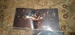 """Диск Rammstein с автографами группы, альбом """"Liebe ist für alle da"""", фото №9"""