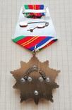 Орден Дружба Народов (копия), фото №3
