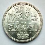 Египет 1 фунт 1980 г. - Прикладные профессии, фото №3