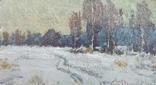 Зимняя дорожка, фото №2