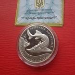 """10 гривень """"Стерлядь прісноводна"""" 2012 рік. фото 2"""
