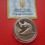 """10 гривень """"Стерлядь прісноводна"""" 2012 рік. фото 3"""