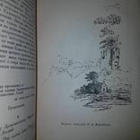 Литературные кружки. В свет вышло всего 3500 экземпляров. Просуществовал всего три года, фото №4