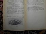 Кулинария 1958 год, фото №6
