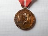 Медаль Национальной комиссии по образованию, Польша, фото №3