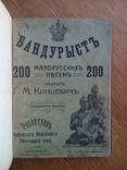 Бандурист сборник малорусских песен 1910 г, фото №2