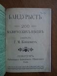 Бандурист сборник малорусских песен 1910 г, фото №3